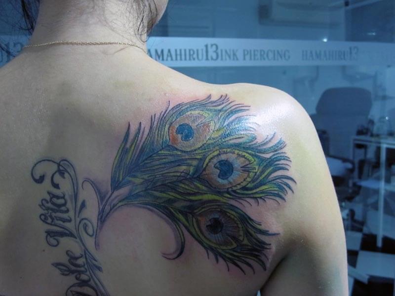 Tattoo Pluma Pavo Real
