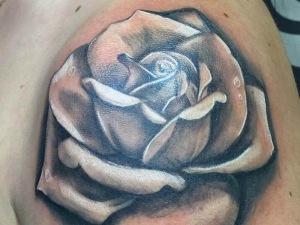 Tattoo Realistic Rose Hamahiru 13 Ink Tattoo & Piercing