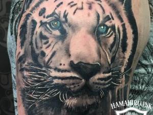 Tiger Tattoo Hamahiru 13 INk Tattoo & Piercing